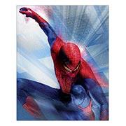 Spider-man. Размер: 24 х 30 см